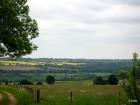 landscape-246
