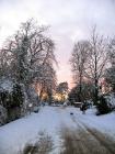 snow-204