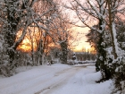 snow-205_edited-1