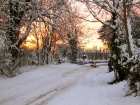 snow-207_edited-1